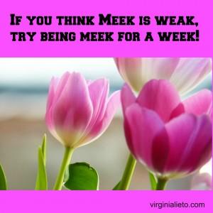 Meek for a week