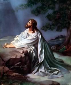 Jesus in Garden