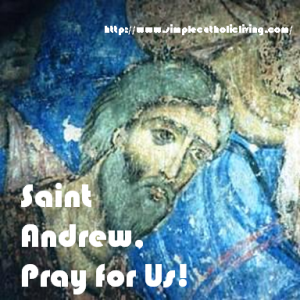 Saint Andrew, Pray for us!